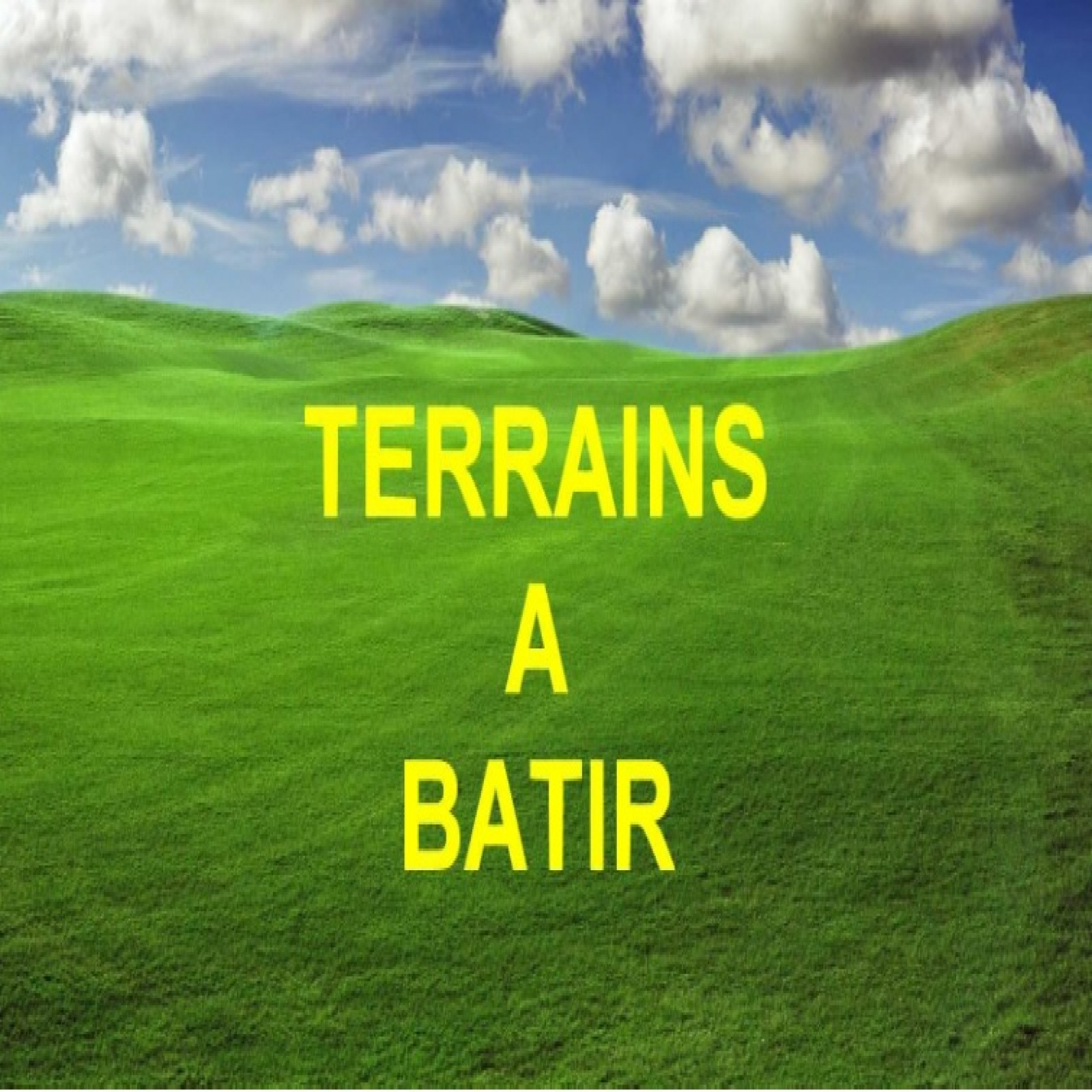 Image_, Terrain, Boves, ref :pal36172